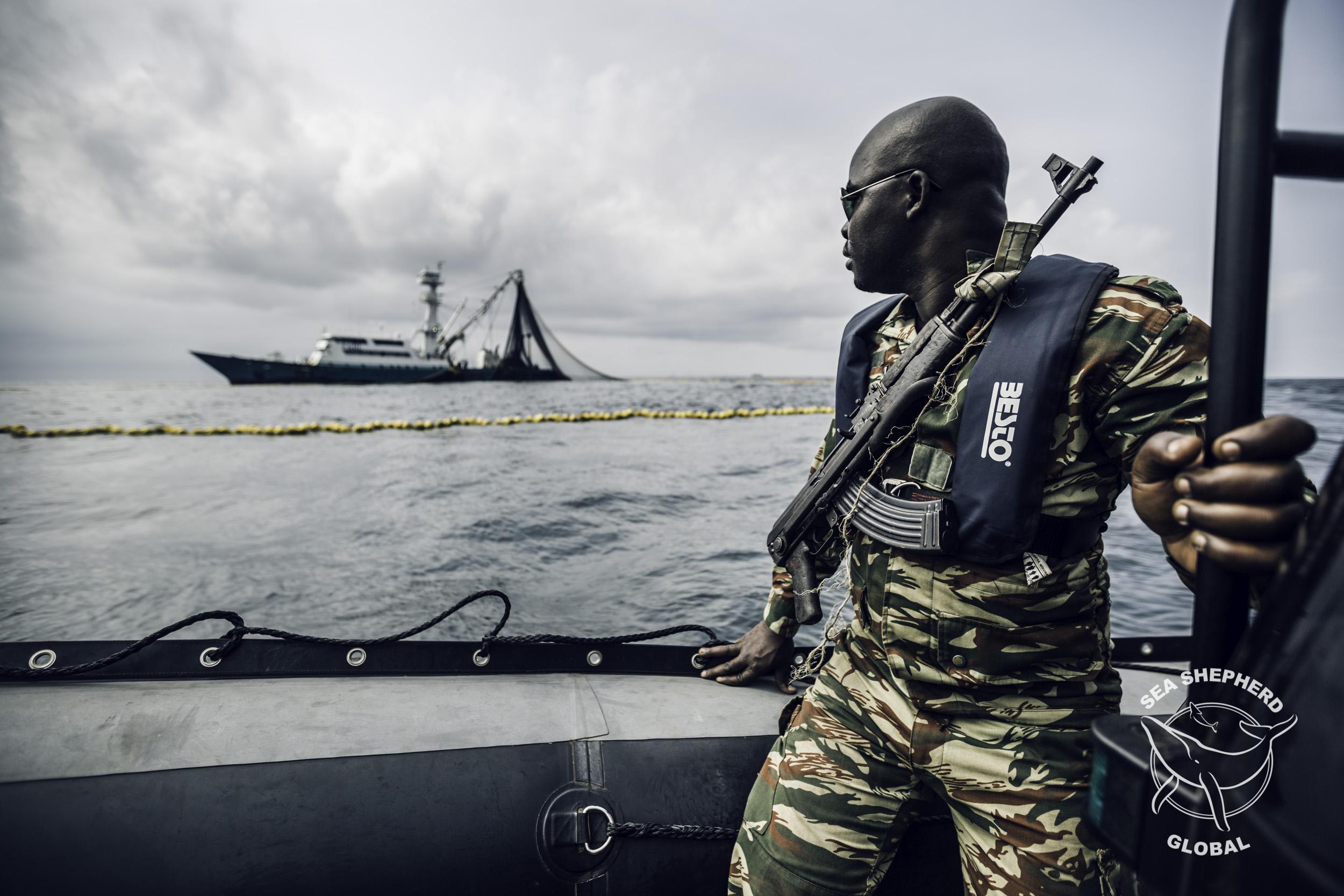 GoKo Travels now partners with Sea Shepard